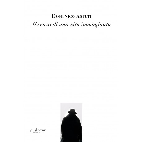 Domenico Astuti - Il senso di una vita immaginata