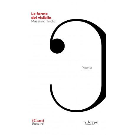 Massimo Triolo - Le forme del visibile