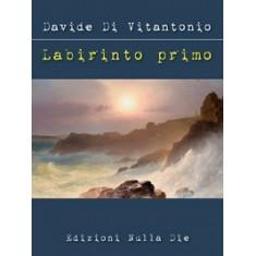Davide Di Vitantonio - Labirinto Primo